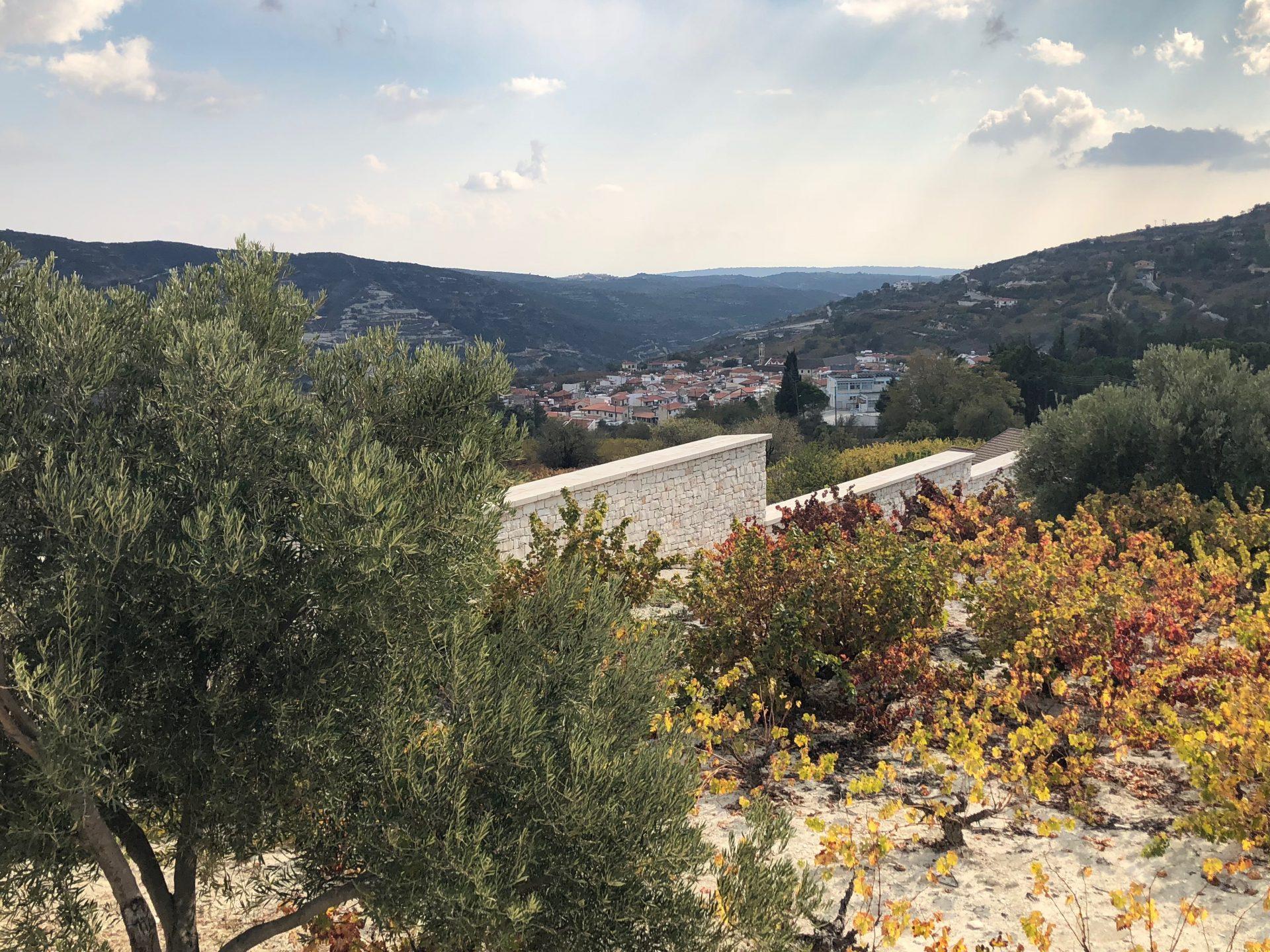Oenou Yi - Ktima Vassiliades
